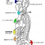 若返るためにも未知な体の仕組みを知ってみたいと思いませんか